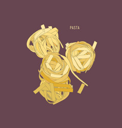 home made pasta sketch vector image