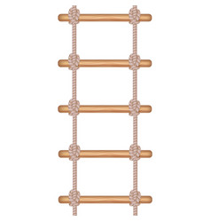 Realistic detailed 3d rope ladder or stair vector
