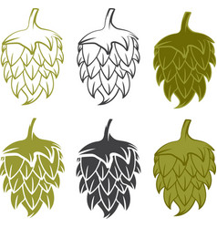 set design template of beer hops vector image