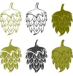 Set design template of beer hops vector