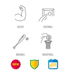baseball football and basketball icons vector image