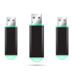 Green USB Flash Drive isolated set vector image vector image
