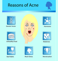 acne reasons skin problems and diseases beauty vector image