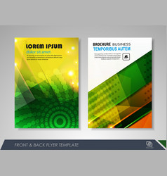 Brochures and flyers template design vector