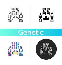 chromosome division icon vector image