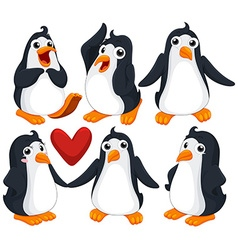 Cute penguins in different poses vector