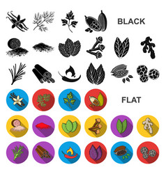 herb and spices flat icons in set collection for vector image