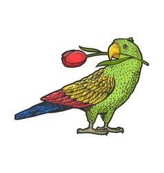 Parrot with tulip in beak sketch vector