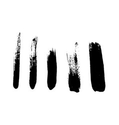 set black brushstrokes vector image