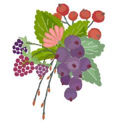 Wild berries composition vector