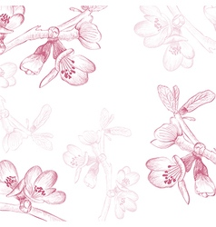 Vintage Spring Cherry vector image