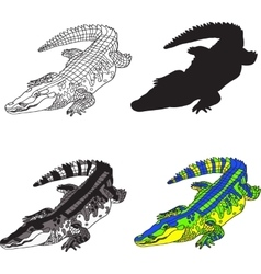depicting crocodile made contour vector image vector image