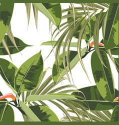 exotic bright ficus elastica and palm leaves vector image