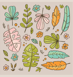 hand drawn leaves botanic herbarium vector image