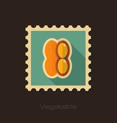 Peanut flat stamp vegetable vector