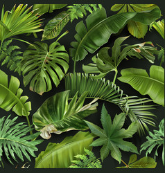 Seamless pattern with green tropical leaves vector