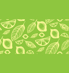 Seamless background with citrus fruit and leaves vector