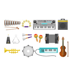 different music instruments musical guitar vector image