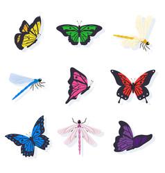 dragonflies and butterflies set vector image