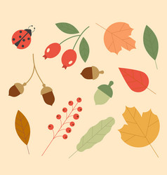 icons autumn set colorful leaves and vector image