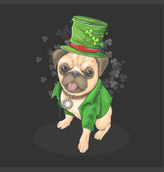 st patricks day pug wears a cute hat vector image