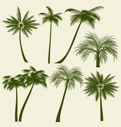 Summer holiday palm tree silhouettes vector