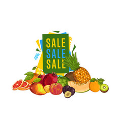 discount sale poster with fresh fruit vector image