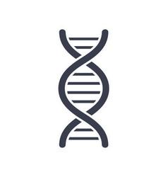 Dna deoxyribonucleic acid chain logo design icon vector