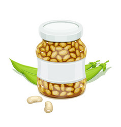 Glass jar with bean and pods vector