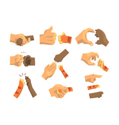 Hand a man holding animals paw set animal and vector