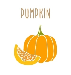Pumpkin isolated on white vector
