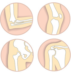 Set human joints elbow knee hip joint vector