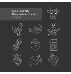 Allergens thin line icons set vector