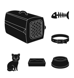 an animal cat black icons in set collection for vector image