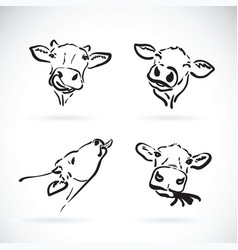 Cow head on white background farm animal vector