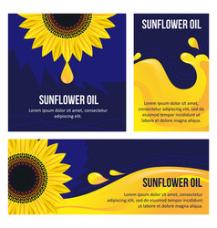 set of card graphic sunflower and sunflower oil vector image