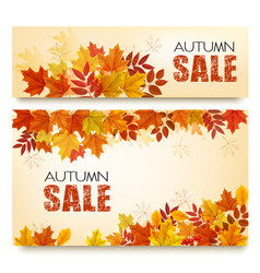 set two autumn sale banners with colorful vector image
