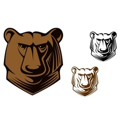 Kodiak bear mascot vector image vector image