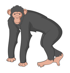 Chimpanzee icon cartoon style vector