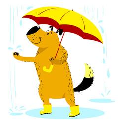 fall season dog character cute pet under the rain vector image
