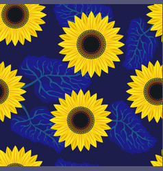 Seamless pattern graphic sunflower vector