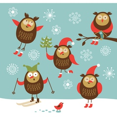 set of different owls character vector image