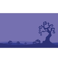 Silhouette of pumpkins and dry tree Halloween vector image