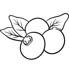 blueberry fruits for coloring book vector image