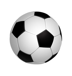 soccer football ball isolated on the white vector image