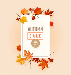 autumn sale promo banner with fall foliage on pink vector image