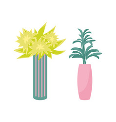 houseplants in vase and flower pot isolated vector image