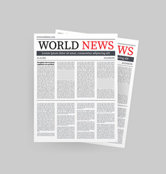 Mock up a blank daily newspaper fully vector
