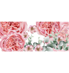 peony flowers card watercolor colorful vector image