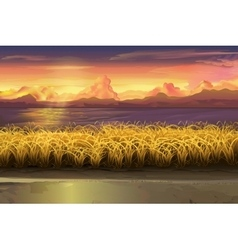 Sunset field landscape vector image